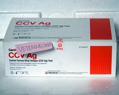 GENBODY CCV AG